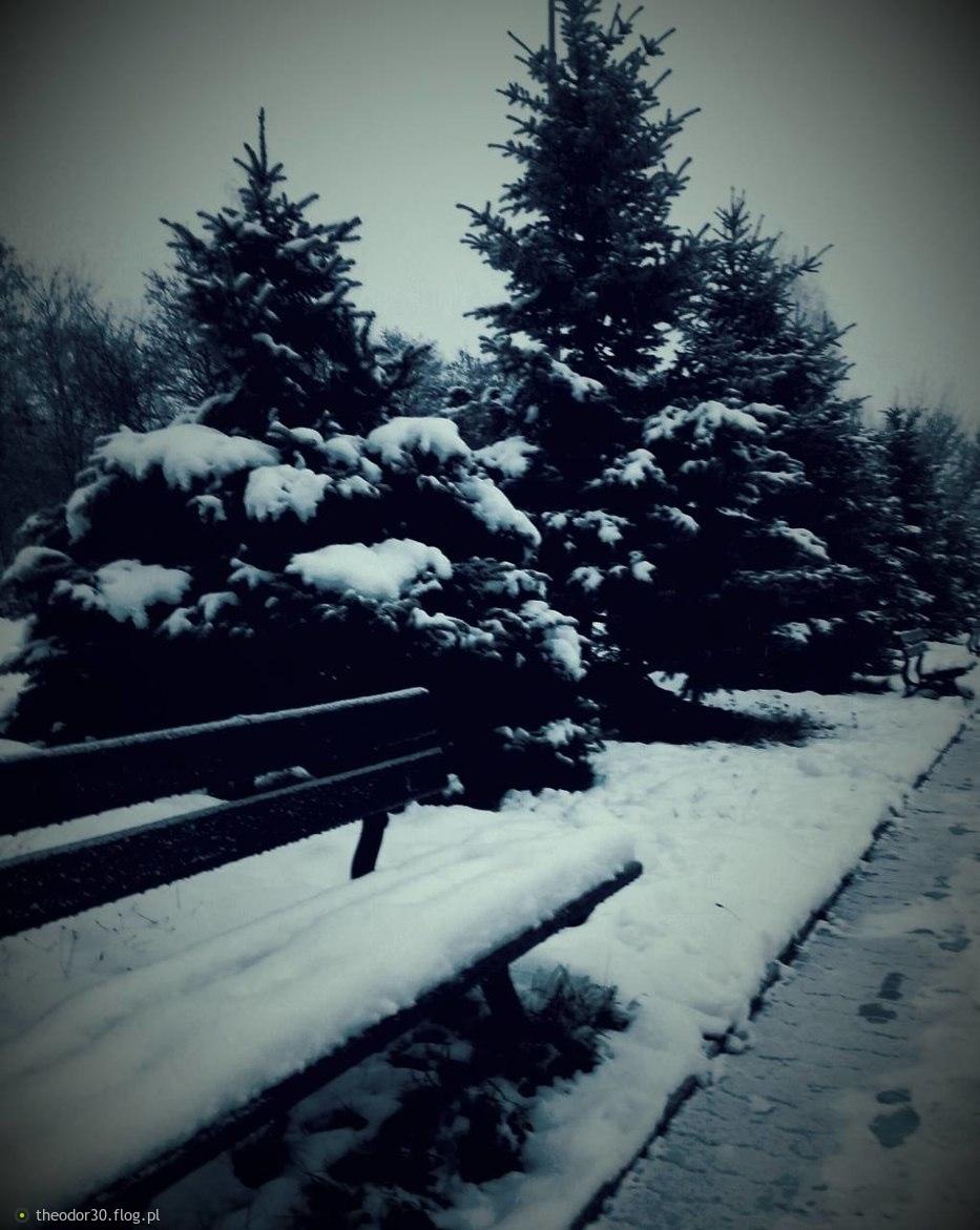 Oj zima zima ... :-)