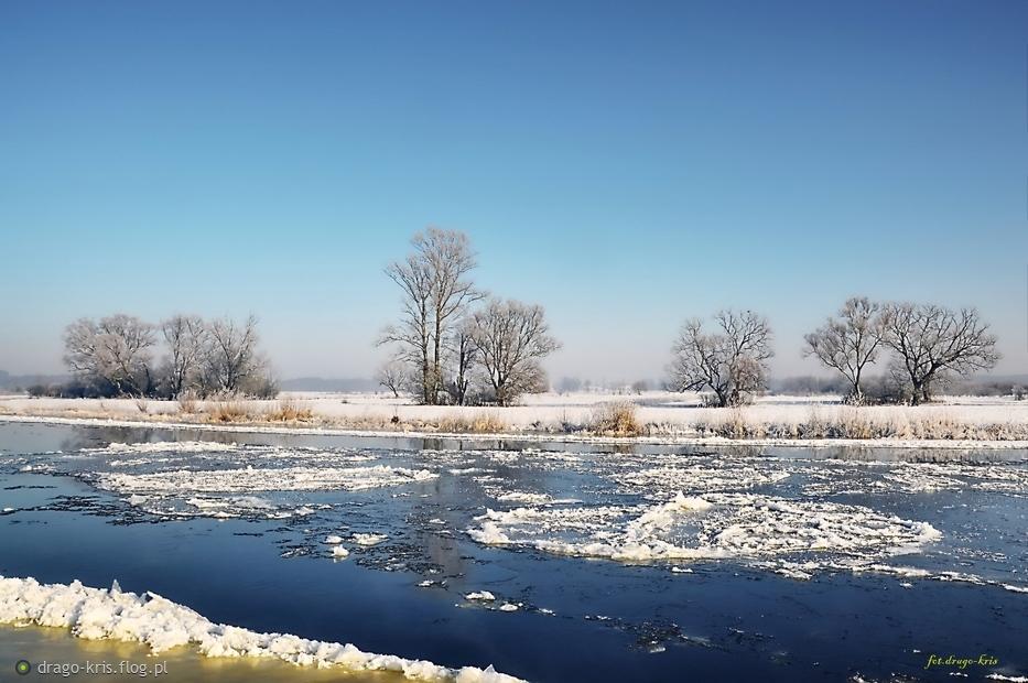 Podlaska Zima