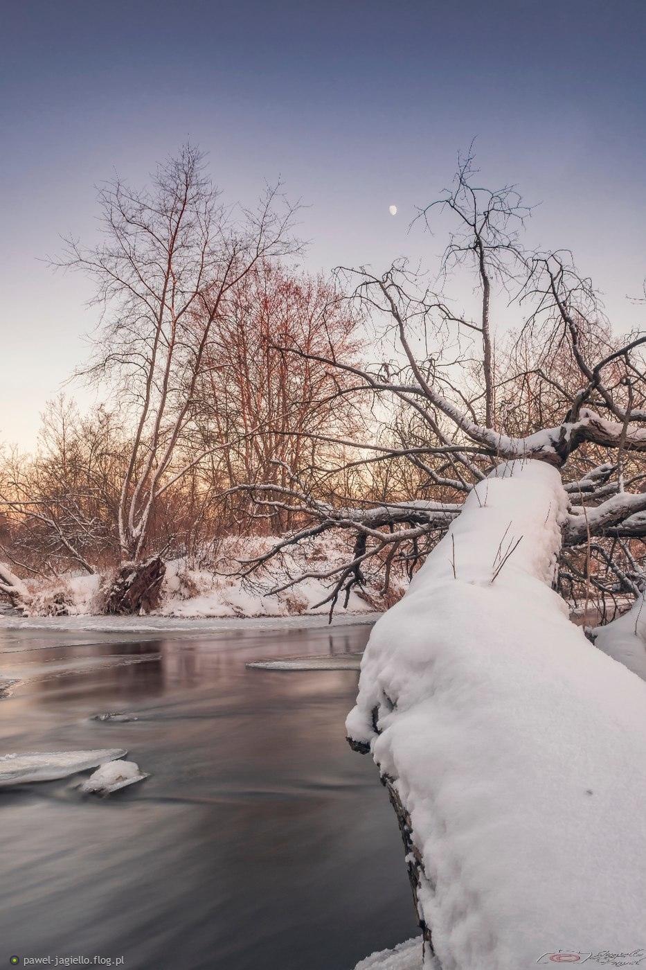 zima nad Nidą
