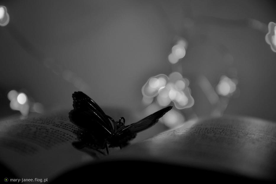 Motylem jestem... :)