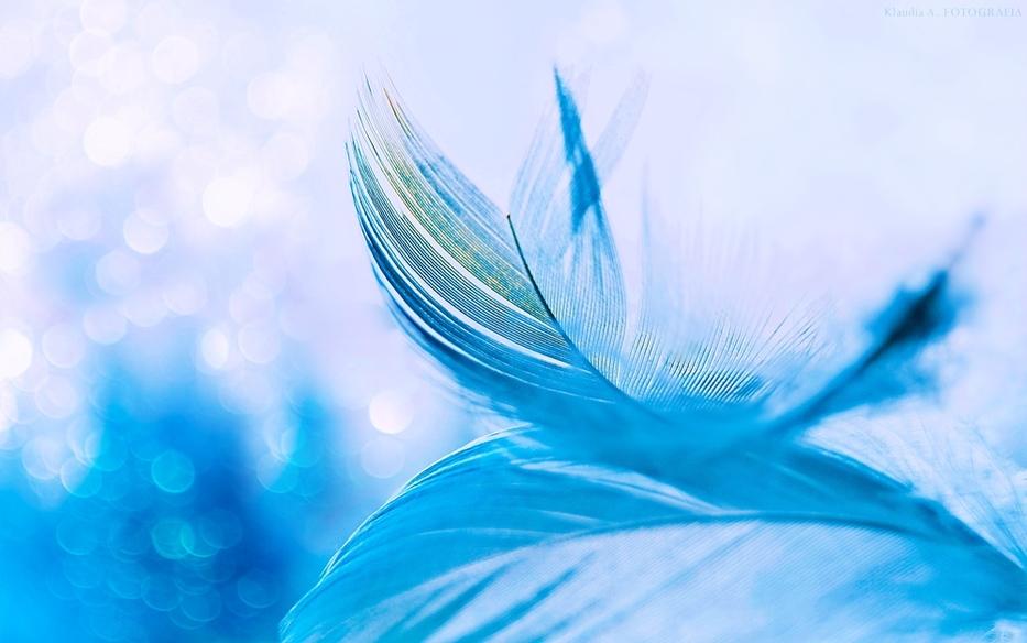"""""""Oto Ja posyłam anioła przed tobą, aby cię strzegł w czasie twojej drogi..."""""""