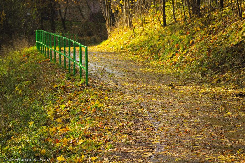 zima musi się pogodzić ze swoją poprzedniczką jesienią