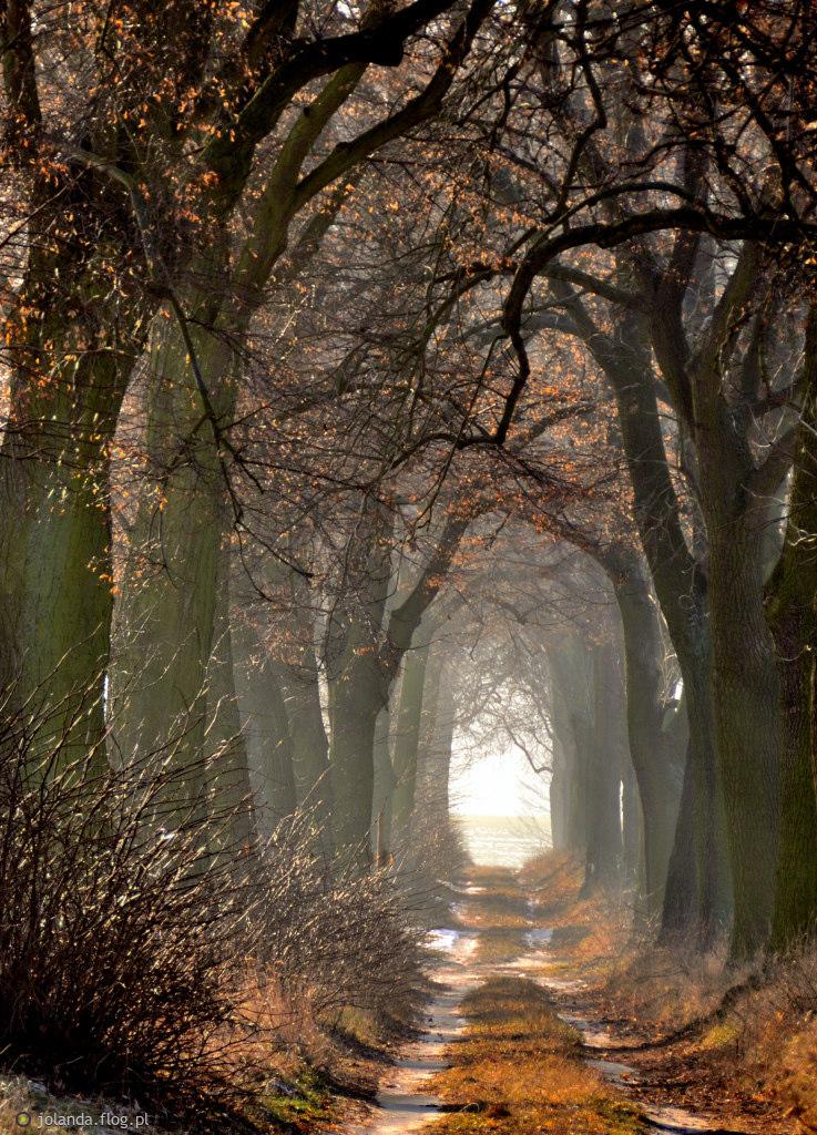 """""""Światełko"""" w tunelu ;)"""