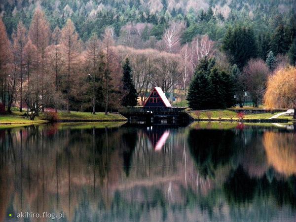 http://s21.flog.pl/media/foto_middle/11508287_zamknij-oczy-i-wyobraz-sobie-szczescie-co-widzisz.jpg