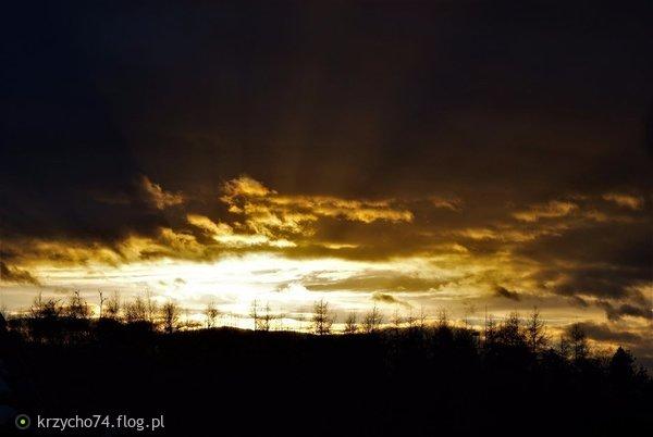http://s21.flog.pl/media/foto_middle/11691210.jpg