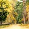 idzie jesień... ::