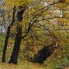 Jesień w moim parku...