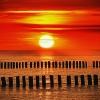 Nie pozwól, by słońce zaszło we mnie :: Nie żyjemy, aby umierać; ale umieramy, aby żyć wiecznie. Michael Buchberger George Michael (25.06.19