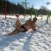 Zima w Chochołowie ::