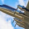 The Flying Bulls.....Doug<br />las DC-6B :: ....z karnawałowym pozdro<br />wieniem  !!!