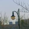 Samotna lampa.... ::
