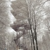 Wieża w Wieżycy,śnieg i c<br />zynnik ludzki :) ::     Samo dojście do tego <br />miejsca Czarnym Szlakiem <br />przez las w śniegu po kol<br />ana jest już dużym wy