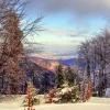 Kolory zimy... ::
