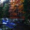 Rzeka Kamienna   w jesien<br />nych barwach ...   / Szkl<br />arska Poręba / ::