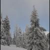 Nie straszna nawet najsro<br />ższa zima, gdy moje serce<br />  rozgrzewa Twój uśmiech.<br />......