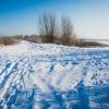 Zimowe ,,skrzyżowanie&quo<br />t;