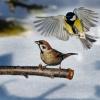 Harce po śniegu bez zaham<br />owań