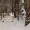 Włóczęgi śniegowe i bezśn<br />iegowe po Puszczy Darżlub<br />skiej... ::