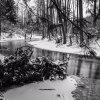 Podlasie- Rzeka Czarna