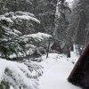 Zakopiański Urok Zimy :)