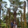W  Jardi Botanic  -  Barc<br />elona