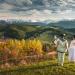 W barwach jesieni... :: Gdyby ktoś szukał fotogra<br />fa ślubnego, zapraszam do<br /> kontaktu.Ps. Mam jeszcze<br /> kilka wolnych termin�