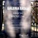 Lublin (321) - Marcin Mroszczak - Galeria Saska - przygody lu-mixa w czasie i przestrzeni jesieni ...